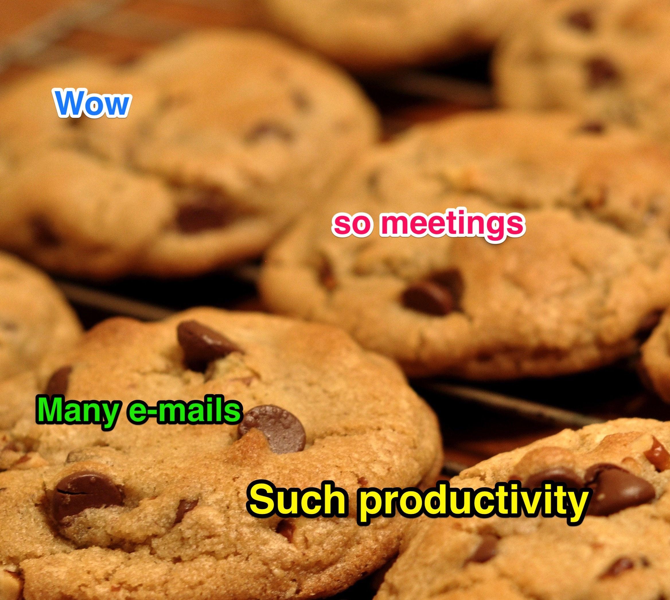 productivity-cookies.jpg